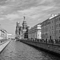 Канал Грибоедова и Спас-на-Крови :: Александр Архипкин