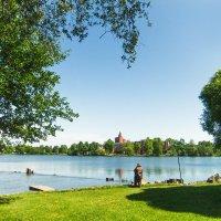 На озере Разлив 2 :: Виталий