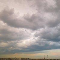 облако принесло дождь :: Елена