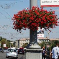Винница :: Gudret Aghayev