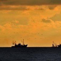 Рыболовные суда :: Наталья Джикидзе (Берёзина)