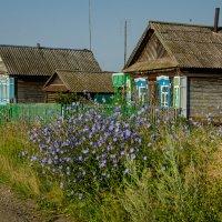 """Деревня """"Красное поле"""" :: Вера"""