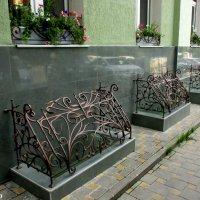 Решётки на Пушкинской улице :: Нина Бутко