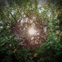 the sun :: Юлия Денискина