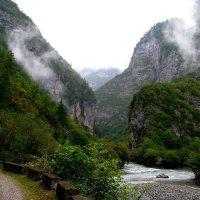 Абхазия.  Горы. Туман. :: Валерия  Полещикова