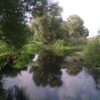 Райский уголок у реки Битюг. :: Ольга Кривых