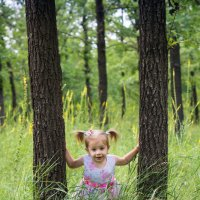 В лесу :: Серёга Одайник