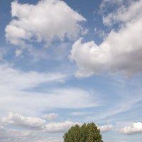 Сельский вид с облаками :: Леонид Никитин