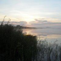 утро раннее. :: victor leinonen
