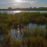 Вечер на заливе :: Анатолий Иргл