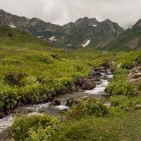 в горах Абхазии :: Андрей ЕВСЕЕВ