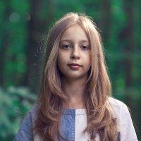 в сказочном лесу :: Алексей Пожаренко