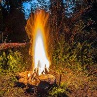 Магия огня :: Андрей Поляков