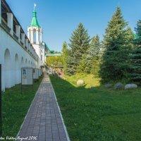 В Спасо-Яковлевском монастыре. :: Виктор Евстратов