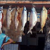 Рыба на базаре: от форели до чебачков :: Асылбек Айманов