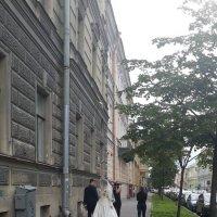 Тяжелая работа свадебного фотографа :: Ольга ОК Попова