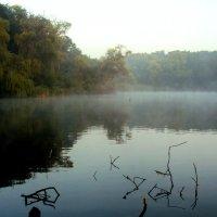 Легкий утренний туман. :: Анатолий