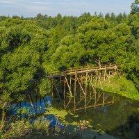 Новый мостик через Киржач :: Сергей Цветков