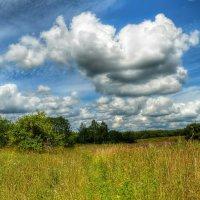 Облака над полем :: Милешкин Владимир Алексеевич