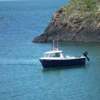 На рыбалке :: Natalia Harries