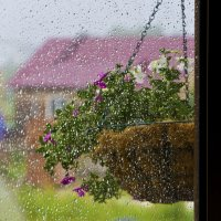 Летний дождь :: Константин Батищев