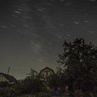 Ночь в саду. :: Сергей Адигамов