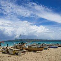 puka shell beach :: Slava Hamamoto