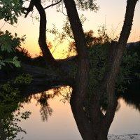 Закат, озеро, Крым :: Тамара Мадюдина