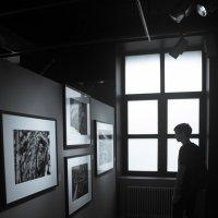 Выставка :: Юрий Дружинин
