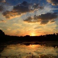 Солнце скользнуло вниз расцвеченным закатом... :: Ольга Русанова (olg-rusanowa2010)