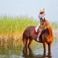 Девушка на лошаде :: Павел Пироговский