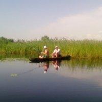 На реке Битюг :: Ольга Кривых