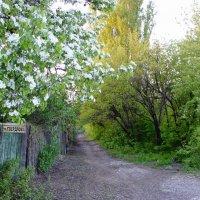 Весна :: Екатерина Пономарева