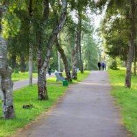 .в парке :: Ольга Cоломатина