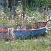 Новая жизнь старой лодки :: Людмила Огнева