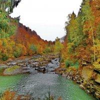 горная река :: valeriy g_g