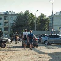 городское ассорти :: Александр Шурпаков
