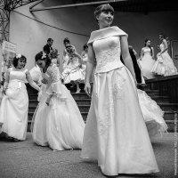 Сбежавшие в невесты :: Николай Велицкий