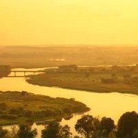 Золотые закаты :: Svetlana Sneg