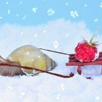 Однажды в студеную зимнюю пору... :: Кристина Девяткина