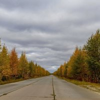 Дорога в осень... :: Дмитрий Сиялов