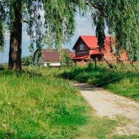 Дачные домики на природе :: Света Кондрашова