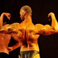 Эх вы мускулы стальные! :: Валерий Толмачев
