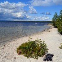 Заполярные пляжи :: Ольга