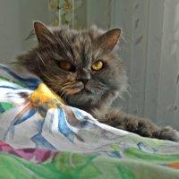 Скоро осень...))) :: Galina Dzubina