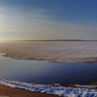 река Обь :: Олег Петрушов