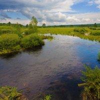 Полноводная река :: Анатолий Иргл