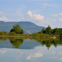 Озеро в районе базы отдыха Черные воды, Крым :: Тамара Мадюдина
