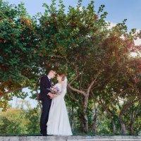 Свадебное фото :: Леся Схоменко
