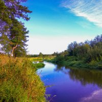 река Шерна :: Саня Bav
